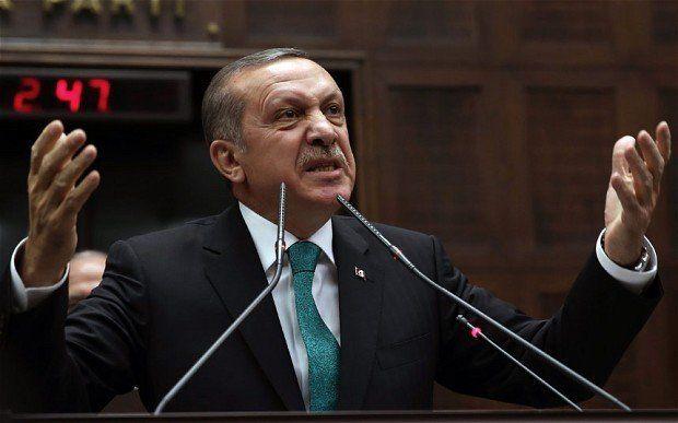 erdogan nervos